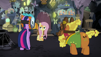 Twilight Sparkle trying to reason with Fluttershy S7E20