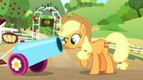 Applejack looks down party cannon barrel S8E18