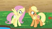 Fluttershy and AJ's cutie marks glow S8E23