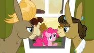 Pinkie's sorry S2E18