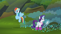 Rainbow Dash and Rarity hear something S8E17