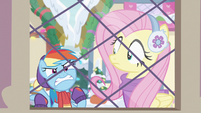 Rainbow frustrated by Fluttershy's answers MLPBGE