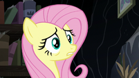 Fluttershy uncomfortable by Twilight and Cattail's stares S7E20
