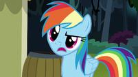 """Rainbow Dash """"how do you know?"""" S7E18"""