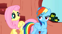 Rainbow Dash is confident about her spectacular performance S01E16