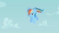 Rainbow Dash pointing down S2E08