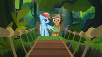 Rainbow and Quibble come to a rope bridge S6E13