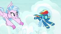 Rainbow and Silverstream flying together S9E3
