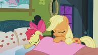 S03E08 Applejack przykrywa Apple Bloom