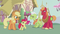 Apple Bloom thanking Applejack S5E18