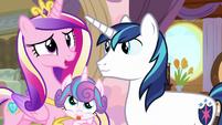 "Princess Cadance ""oh, wonderful!"" S7E22"