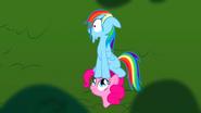 S01E05 Rainbow nie może się ukryć przed Pinkie