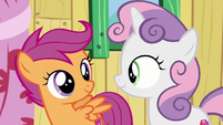 Scootaloo and Sweetie Belle look hopeful S9E12