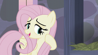 "Fluttershy ""They've been so welcoming and friendly"" S5E02"