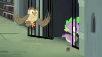 Owlowiscious hooting while Spike enters S4E23