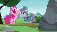 "Pinkie Pie ""it's perfect!"" S8E3"