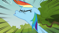 Rainbow Dash sneezing S3E03