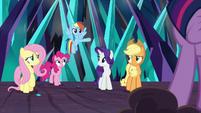 Rainbow Dash volunteering to help S9E2