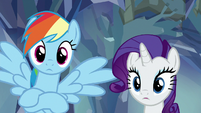 Rainbow and Rarity looking surprised S8E22