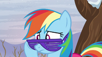 Rainbow with purple glasses looking at Tank S5E5