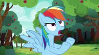 """Rainbow Dash """"that's ridiculous!"""" S6E18"""