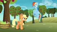 Rainbow Dash happy -awesome!- S8E5