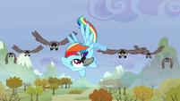 Rainbow kicks a bird away S5E5
