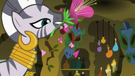S02E06 Zecora używa płatków specjalnego kwiatu