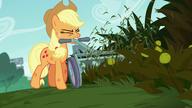 S05E16 Applejack kosi trawę