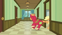 Applejack pulls Big Mac into the room by his tail S6E23