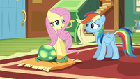 """Fluttershy """"I don't think he needs that"""" S5E5"""