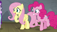 """Fluttershy """"she won't be embarrassed!"""" S8E7"""