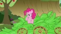 Pinkie Pie thinking S3E04