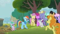 Rainbow Dash ratuje źrebaka S2E8