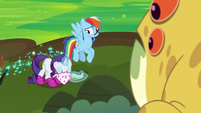 Rarity bowing to the Bufogren S8E17