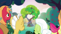 Bright Mac and Pear Butter's tree of love S7E13