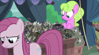 Daisy notices her flowers are all dead S8E18