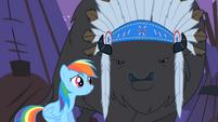 Rainbow Dash tries to reason with Thunderhooves S01E21