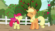 "S05E17 Applejack i Apple Bloom robią razem ""juu-huu"""