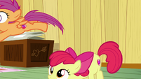Scootaloo jumps away from Apple Bloom S6E4