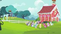 Foals gathering around CMC S4E15