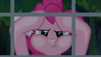Pinkie Pie looks inside A. K.'s window again S7E18