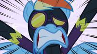 Rainbow Dash Shock S2E4