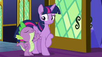 Spike confidently patting Twilight's wing S8E8