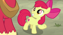 """Apple Bloom """"just like we practiced!"""" S7E8"""