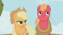 """Applejack """"are you saying"""" S01E04"""