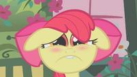 Miserable Apple Bloom S01E12