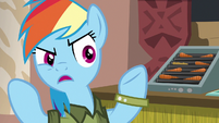"Rainbow Dash ""why would you even come"" S6E13"