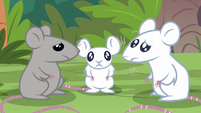 Sanctuary mice look at each other confused S9E18