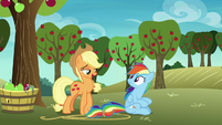 "Applejack ""tag along with a few other ponies"" S8E5"